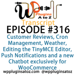 Transcript of WordPress Plugins A-Z #316 Weather, Editing the TinyMCE Editor